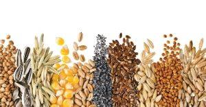 в каких продуктах витамин B фото